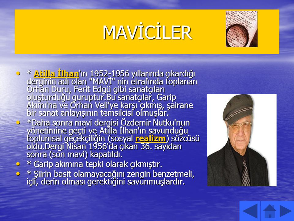 MAVİCİLER