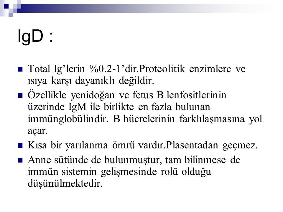 IgD : Total Ig'lerin %0.2-1'dir.Proteolitik enzimlere ve ısıya karşı dayanıklı değildir.