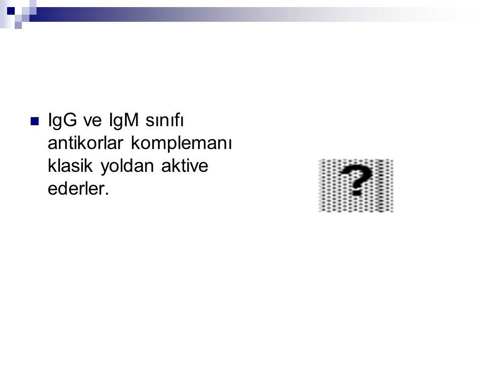 IgG ve IgM sınıfı antikorlar komplemanı klasik yoldan aktive ederler.