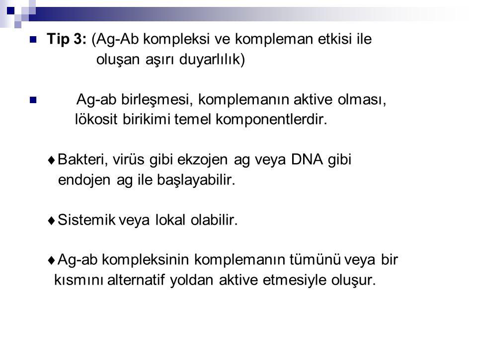 Tip 3: (Ag-Ab kompleksi ve kompleman etkisi ile