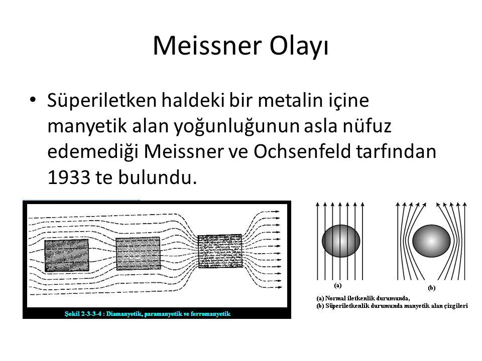 Meissner Olayı