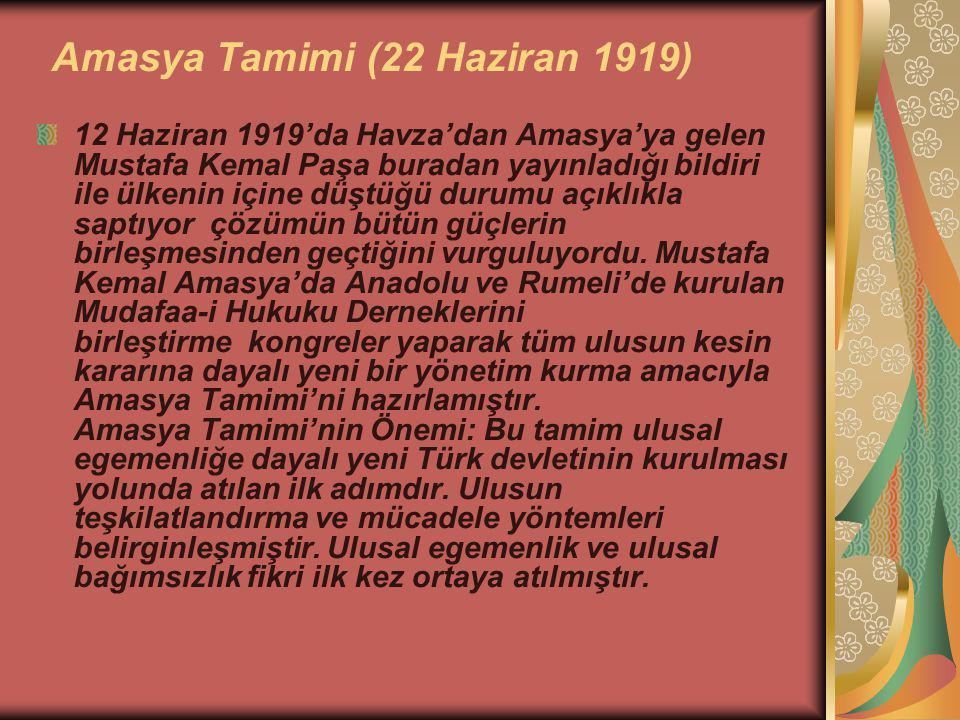 Amasya Tamimi (22 Haziran 1919)