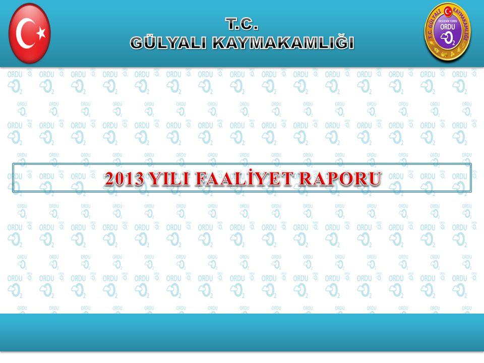 T.C. GÜLYALI KAYMAKAMLIĞI 2013 YILI FAALİYET RAPORU