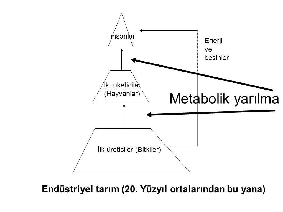 Metabolik yarılma Endüstriyel tarım (20. Yüzyıl ortalarından bu yana)