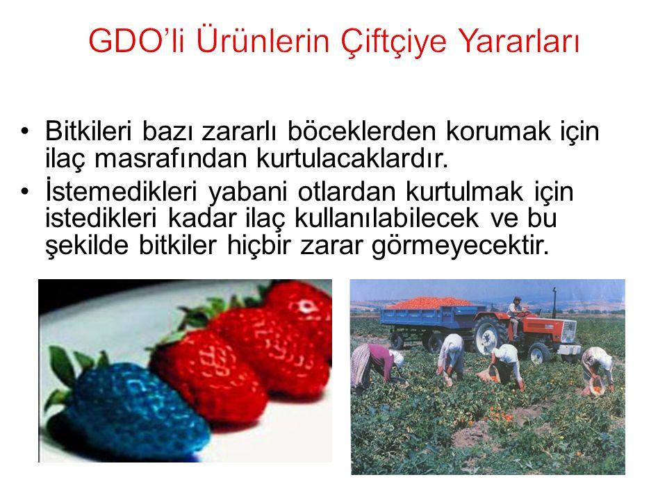 GDO'li Ürünlerin Çiftçiye Yararları