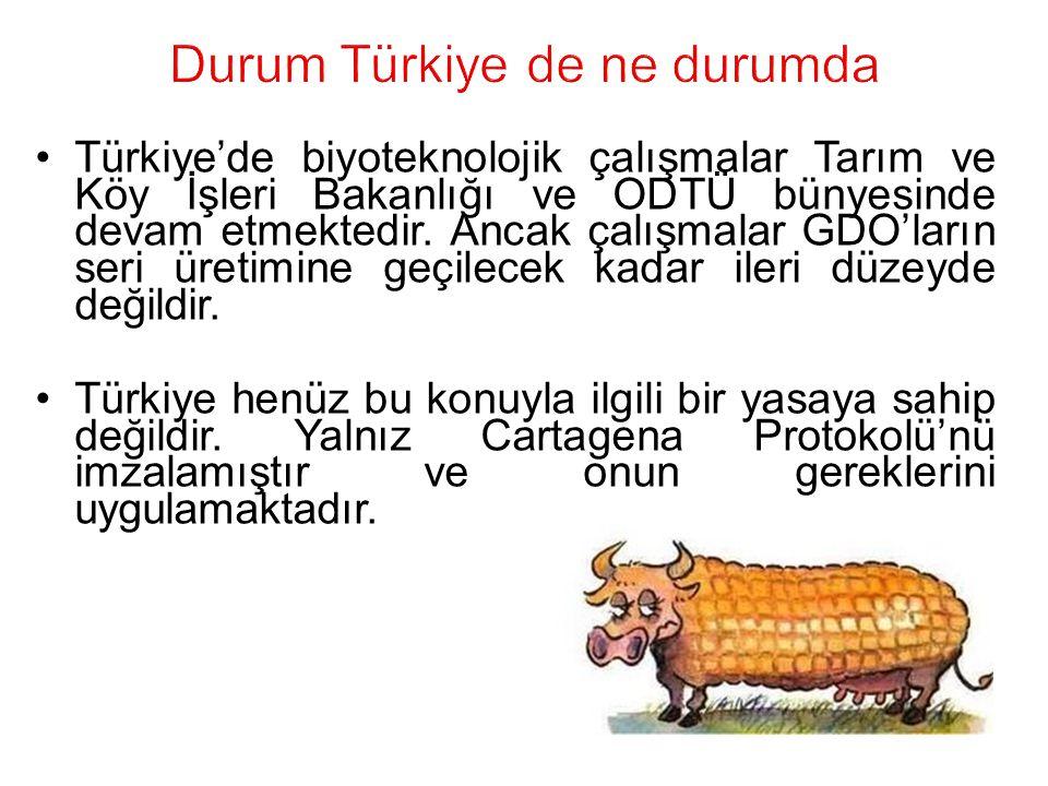 Durum Türkiye de ne durumda