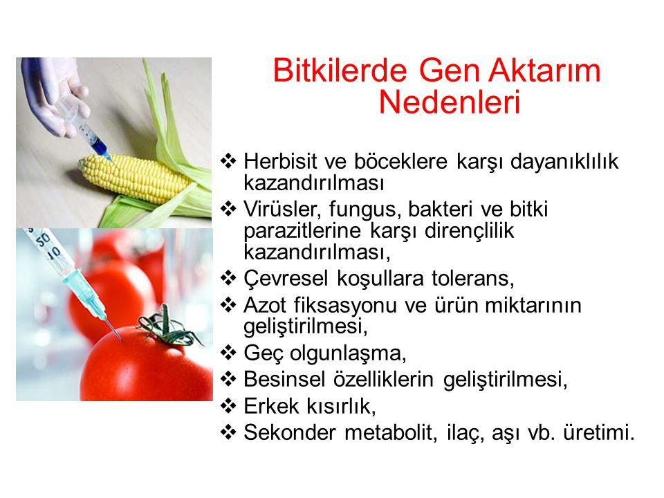 Bitkilerde Gen Aktarım Nedenleri