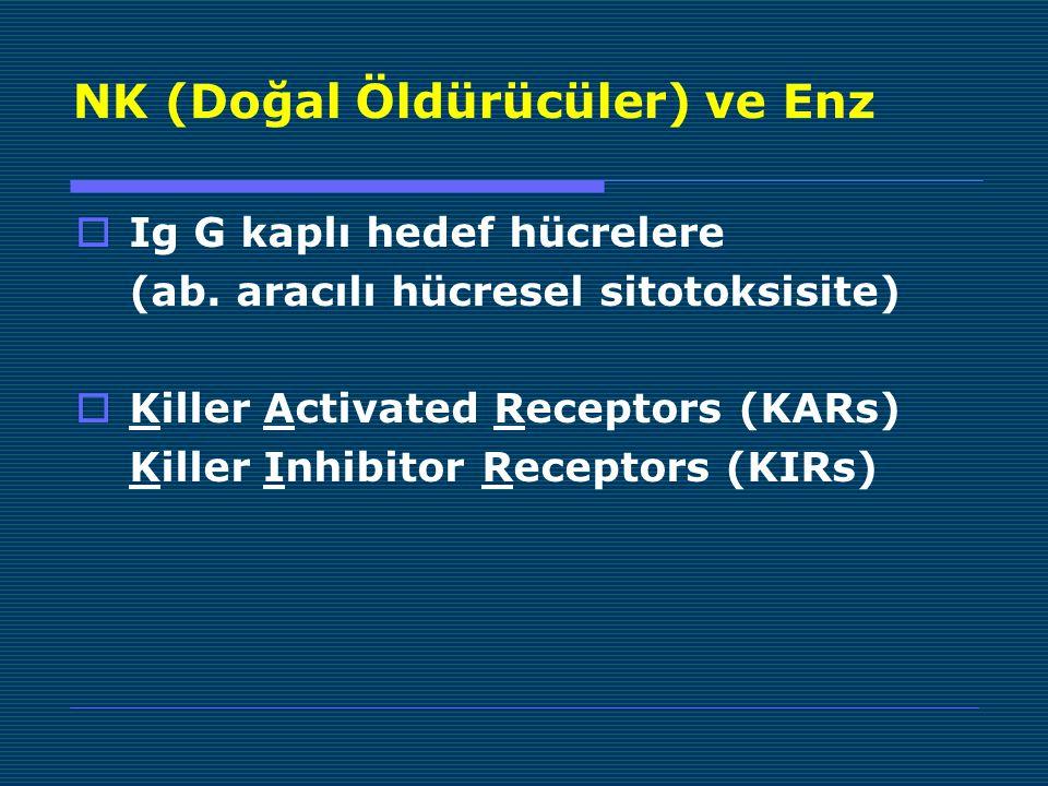 NK (Doğal Öldürücüler) ve Enz