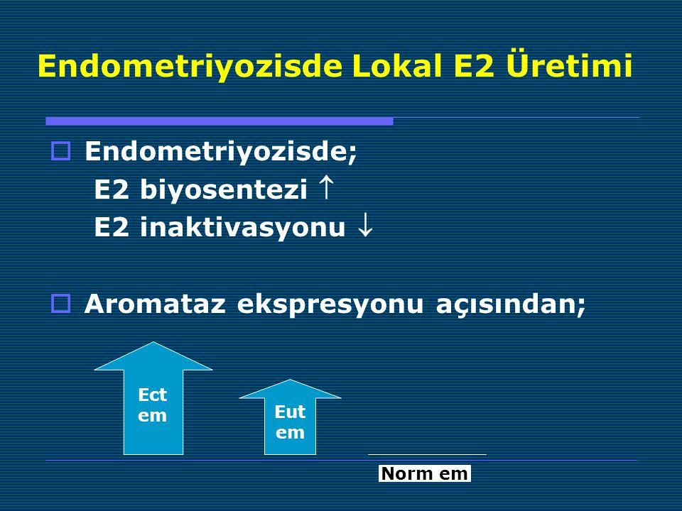 Endometriyozisde Lokal E2 Üretimi