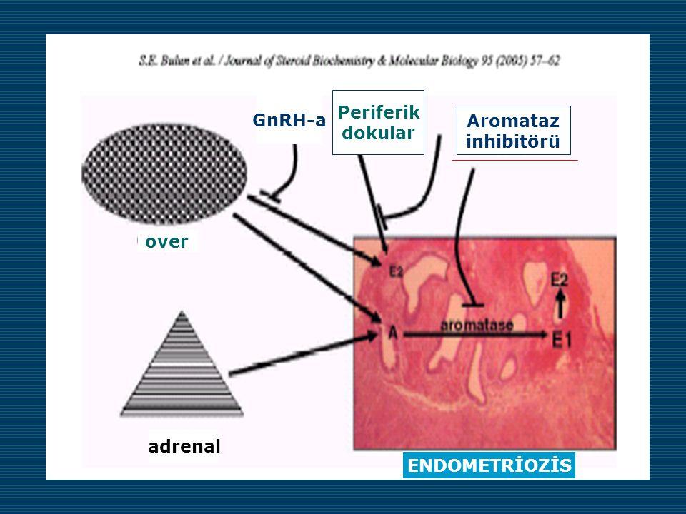 Periferik dokular GnRH-a Aromataz inhibitörü over adrenal ENDOMETRİOZİS