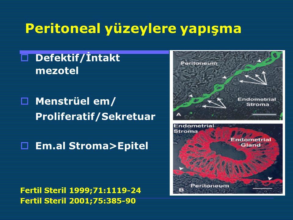 Peritoneal yüzeylere yapışma