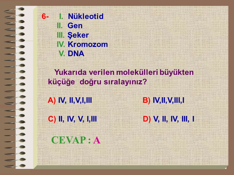 CEVAP : A 6- I. Nükleotid II. Gen III. Şeker IV. Kromozom V. DNA