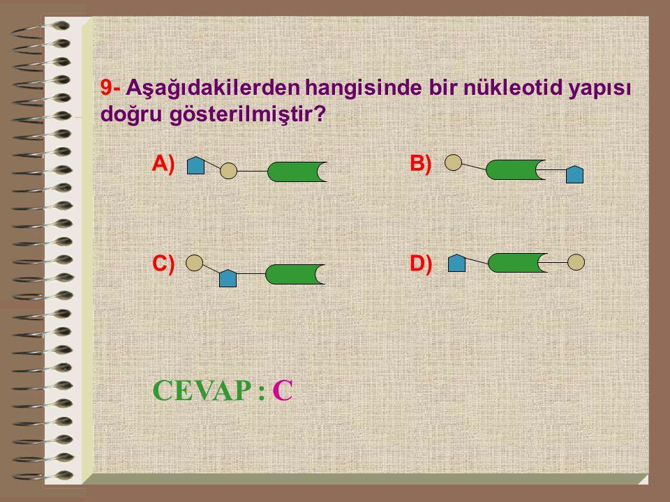 9- Aşağıdakilerden hangisinde bir nükleotid yapısı doğru gösterilmiştir