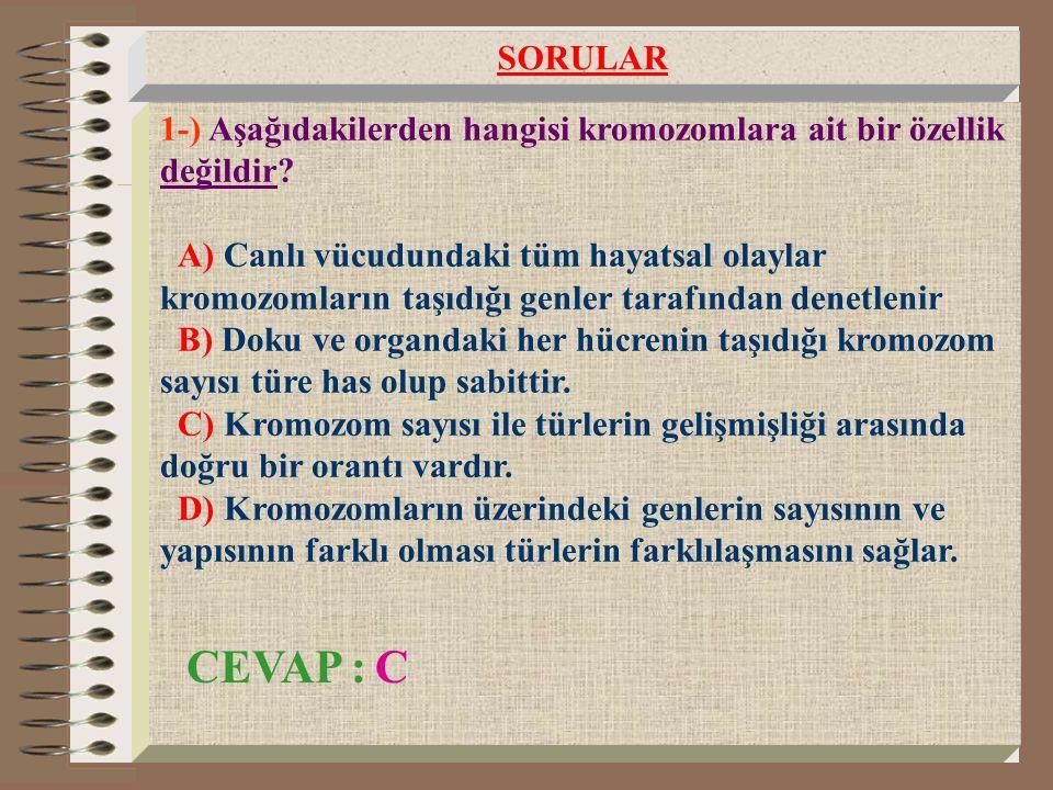 SORULAR 1-) Aşağıdakilerden hangisi kromozomlara ait bir özellik değildir