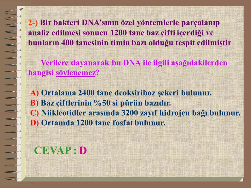 2-) Bir bakteri DNA'sının özel yöntemlerle parçalanıp analiz edilmesi sonucu 1200 tane baz çifti içerdiği ve bunların 400 tanesinin timin bazı olduğu tespit edilmiştir