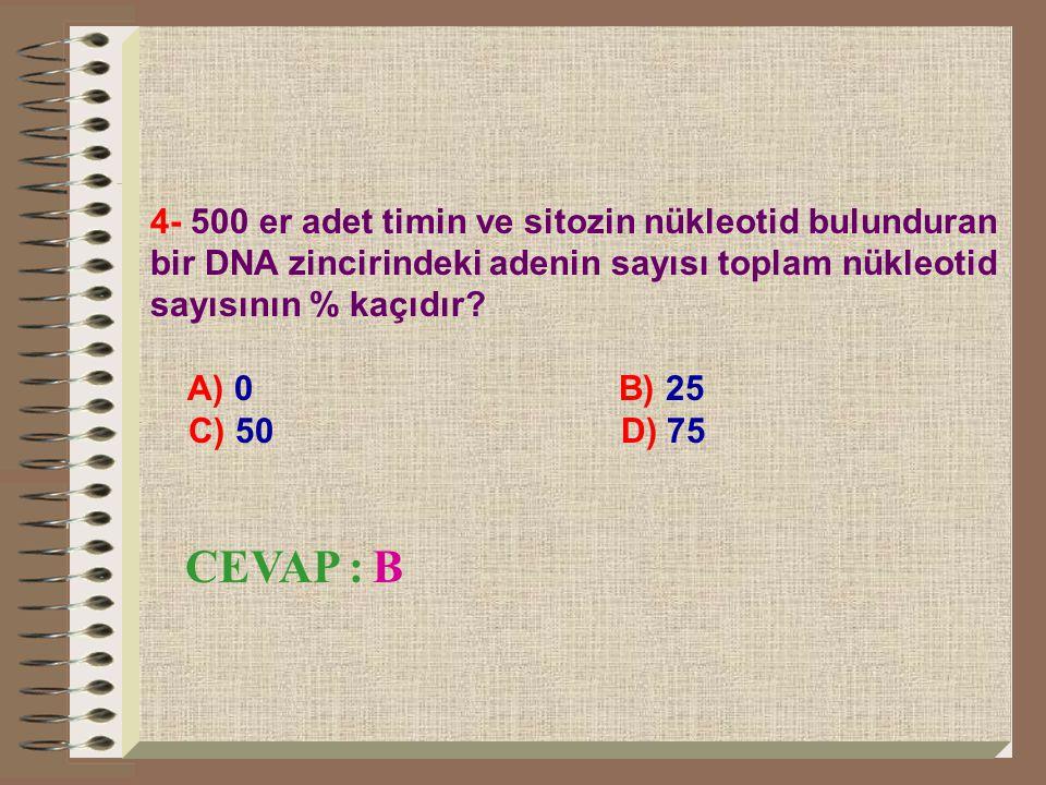 4- 500 er adet timin ve sitozin nükleotid bulunduran bir DNA zincirindeki adenin sayısı toplam nükleotid sayısının % kaçıdır
