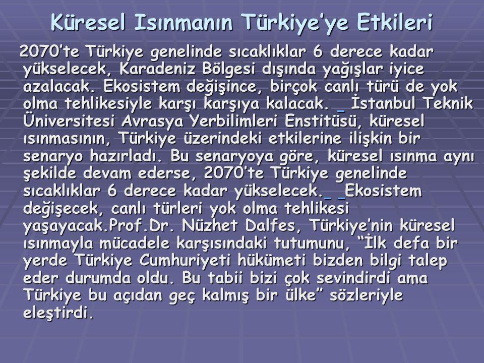 Küresel Isınmanın Türkiye'ye Etkileri