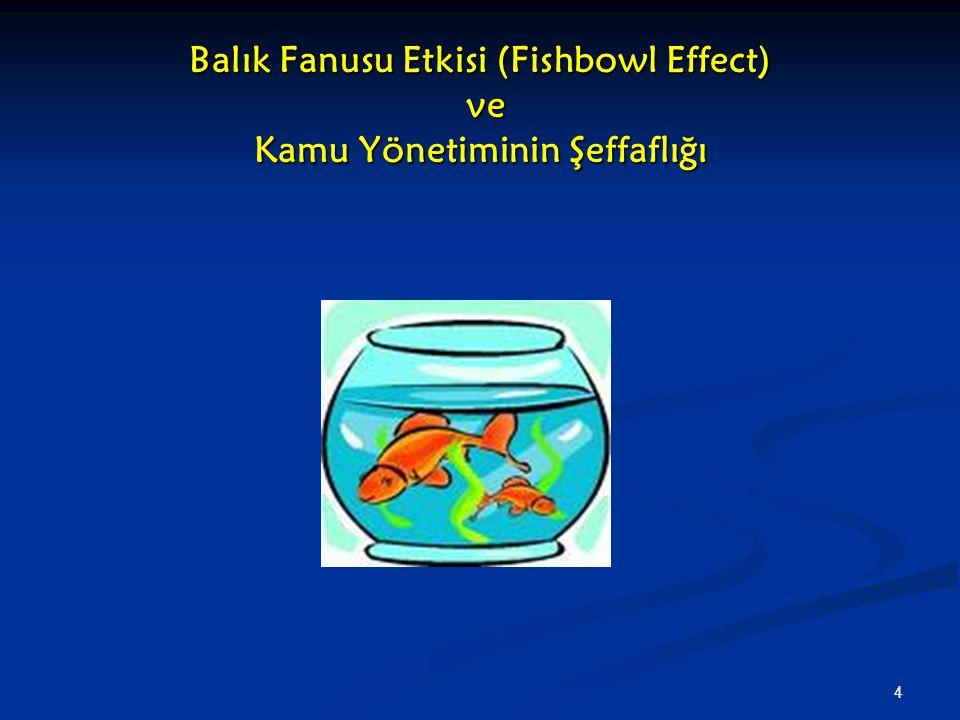 Balık Fanusu Etkisi (Fishbowl Effect) ve Kamu Yönetiminin Şeffaflığı