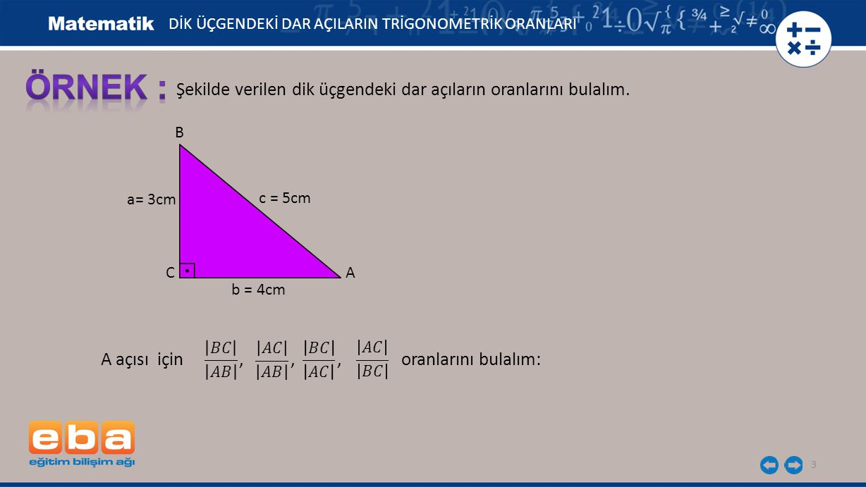 ÖRNEK : Şekilde verilen dik üçgendeki dar açıların oranlarını bulalım.