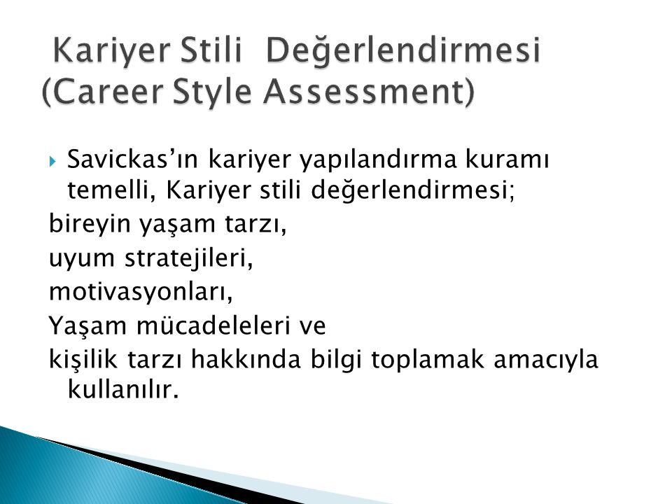 Kariyer Stili Değerlendirmesi (Career Style Assessment)