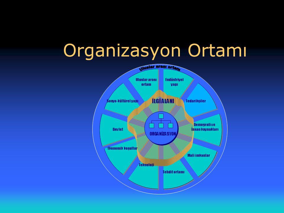 Organizasyon Ortamı Uluslar arası ortam İLGİ ALANI ORGANİZASYON