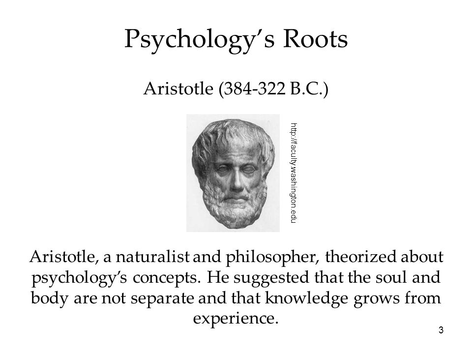 Psychology's Roots Aristotle (384-322 B.C.)