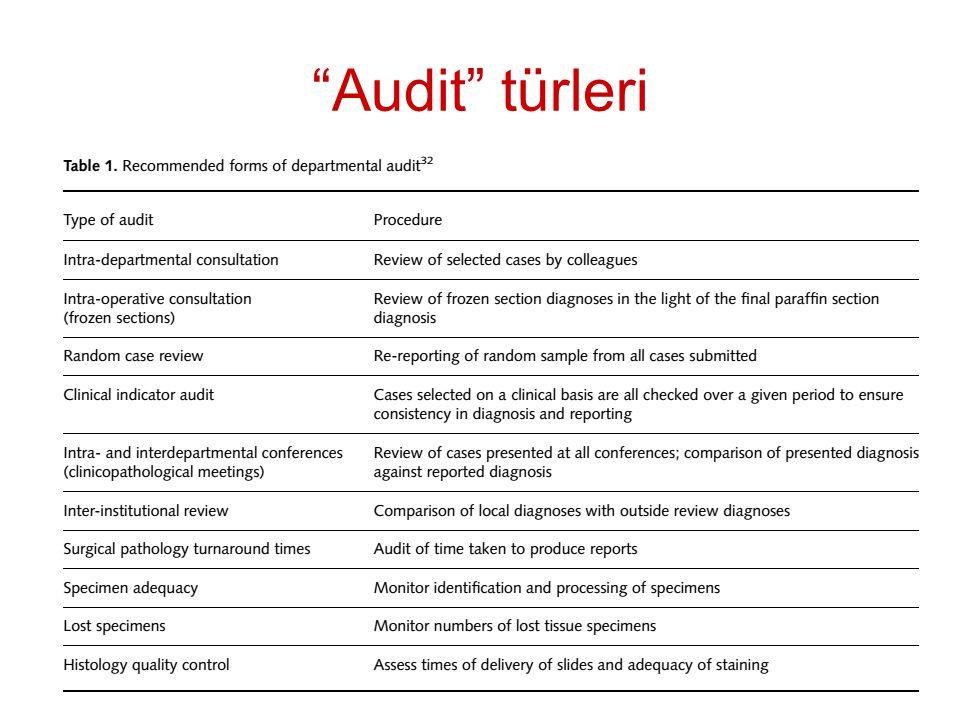 Audit türleri