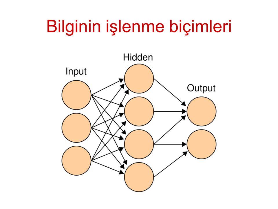 Bilginin işlenme biçimleri