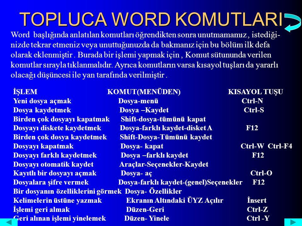 TOPLUCA WORD KOMUTLARI