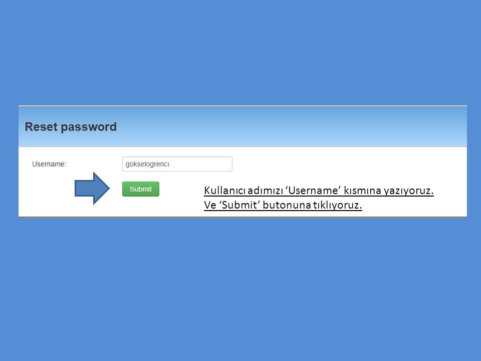 Kullanıcı adımızı 'Username' kısmına yazıyoruz.