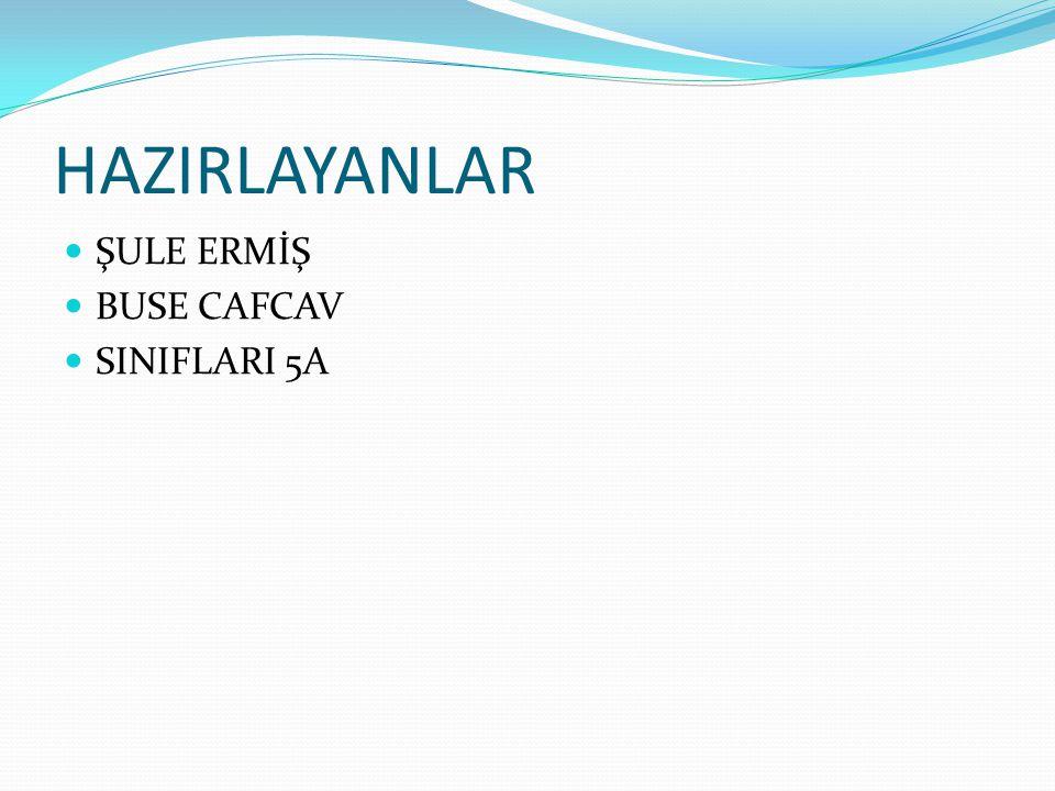 HAZIRLAYANLAR ŞULE ERMİŞ BUSE CAFCAV SINIFLARI 5A