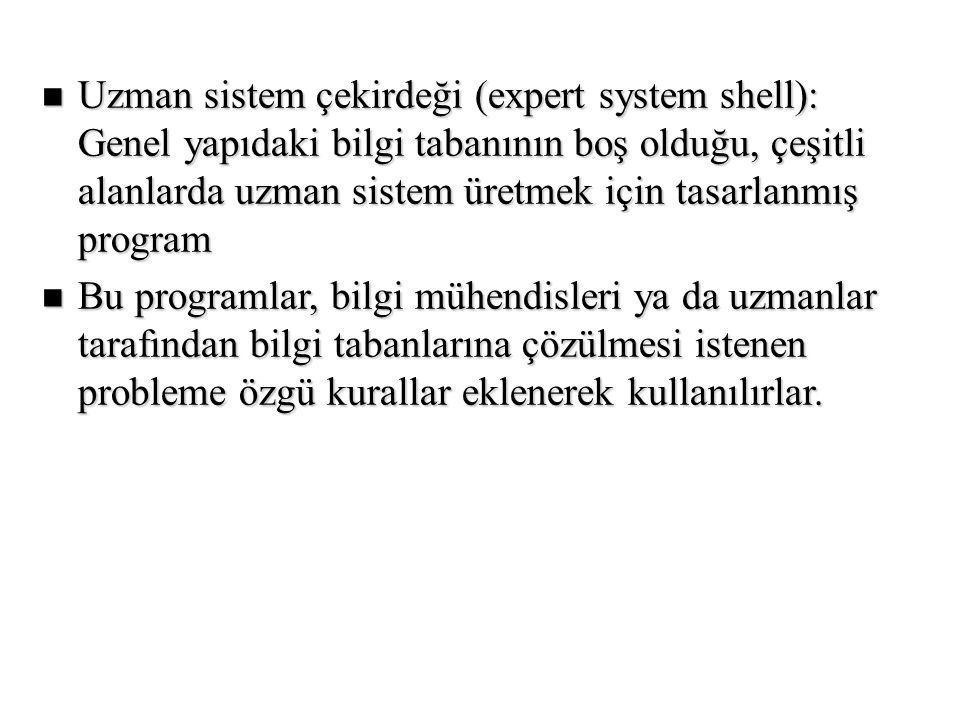 Uzman sistem çekirdeği (expert system shell): Genel yapıdaki bilgi tabanının boş olduğu, çeşitli alanlarda uzman sistem üretmek için tasarlanmış program