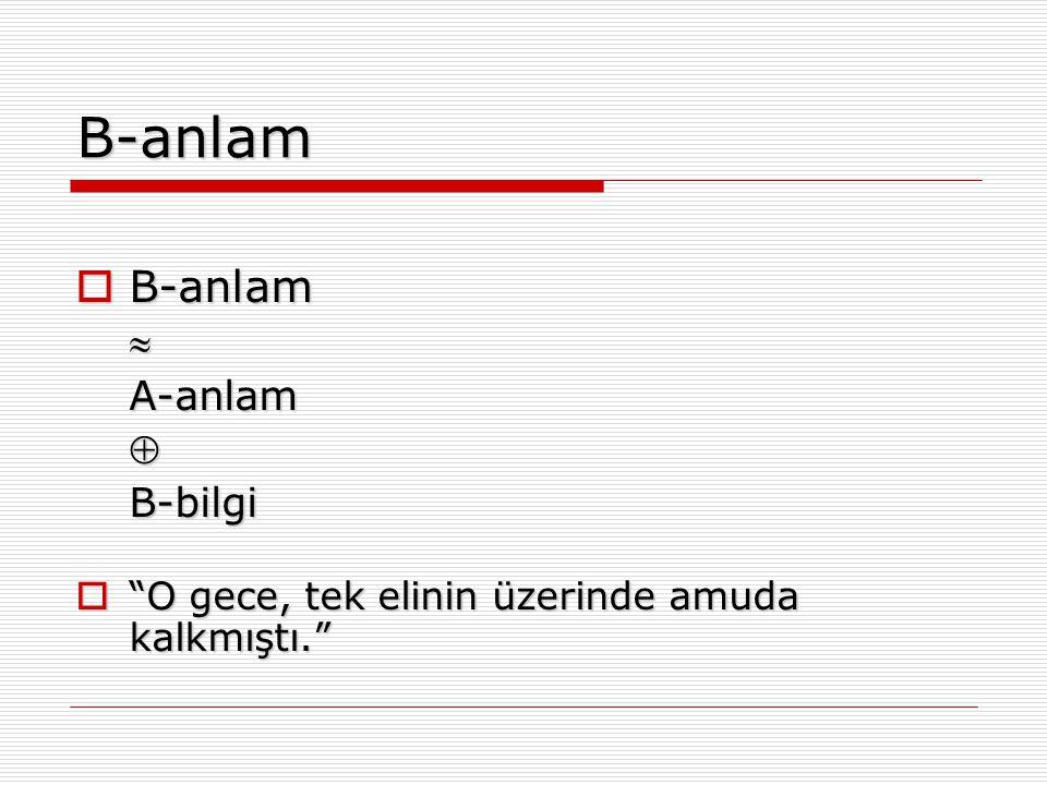 B-anlam B-anlam  A-anlam  B-bilgi