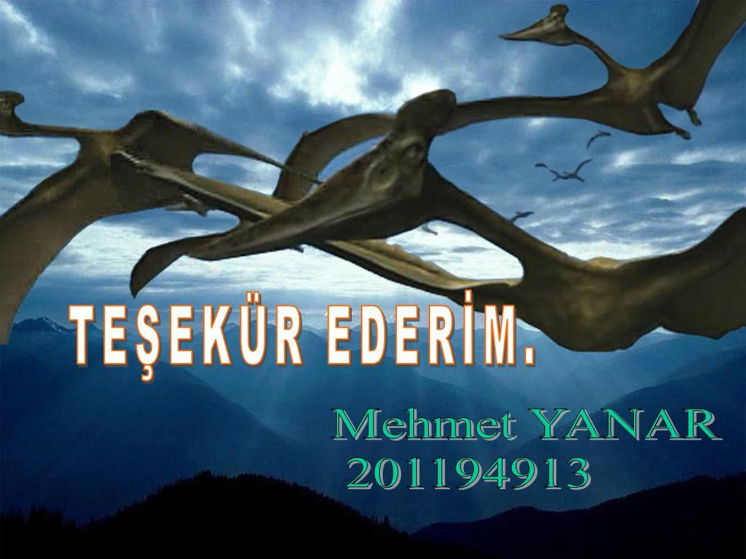 TEŞEKÜR EDERİM. Mehmet YANAR 201194913