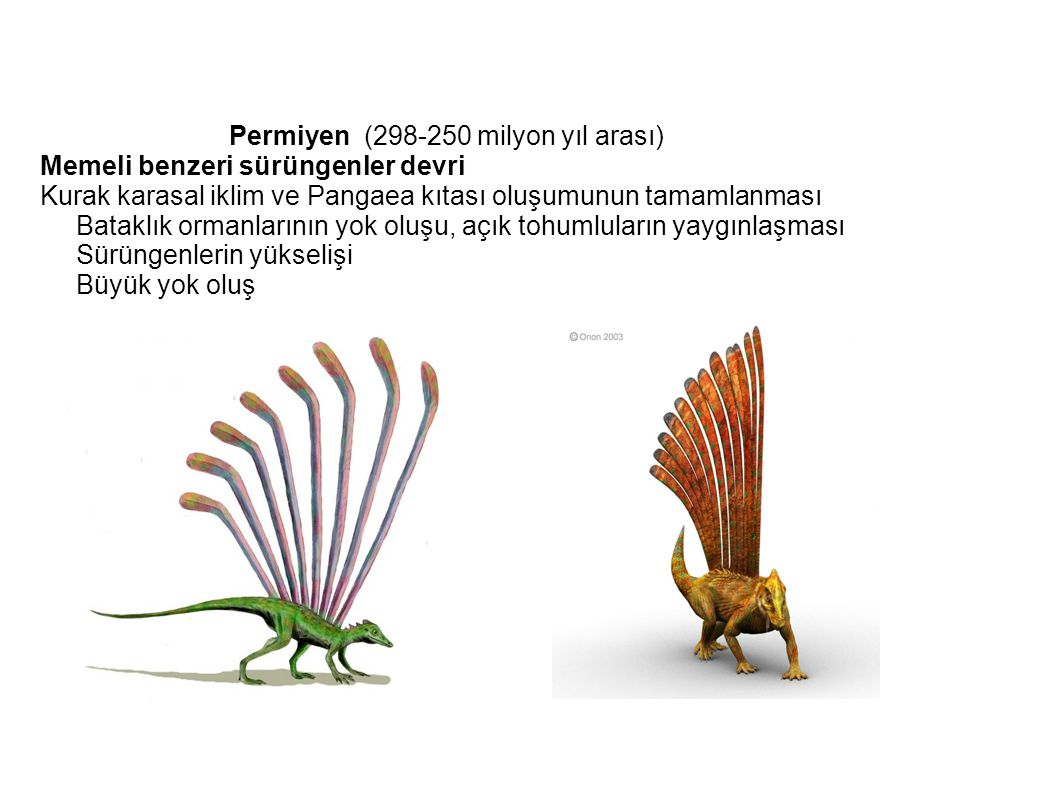 Permiyen (298-250 milyon yıl arası)