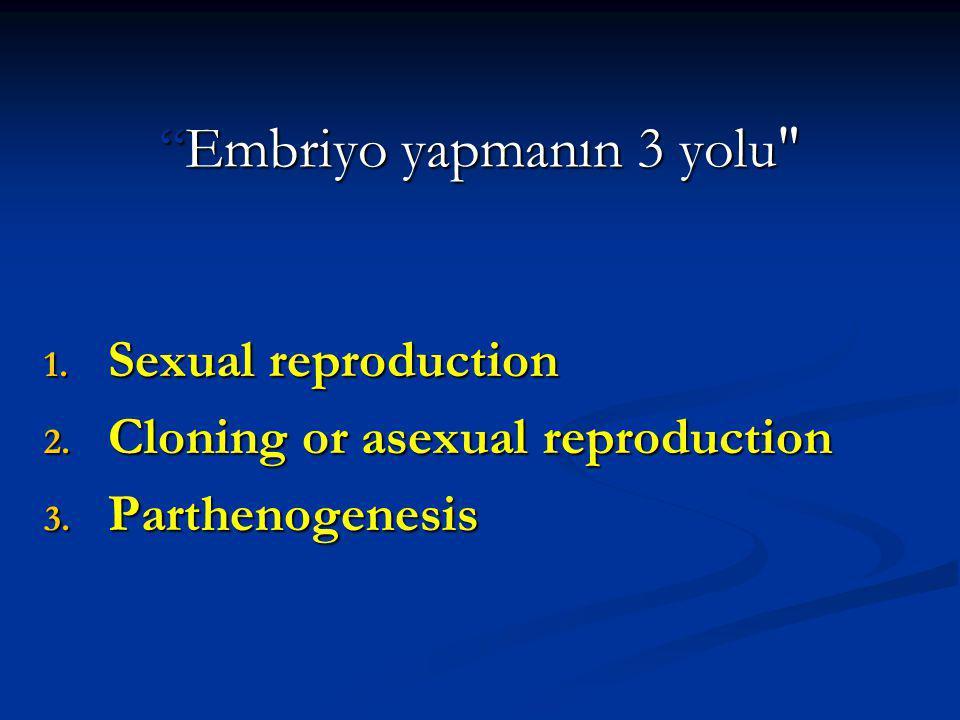 Embriyo yapmanın 3 yolu