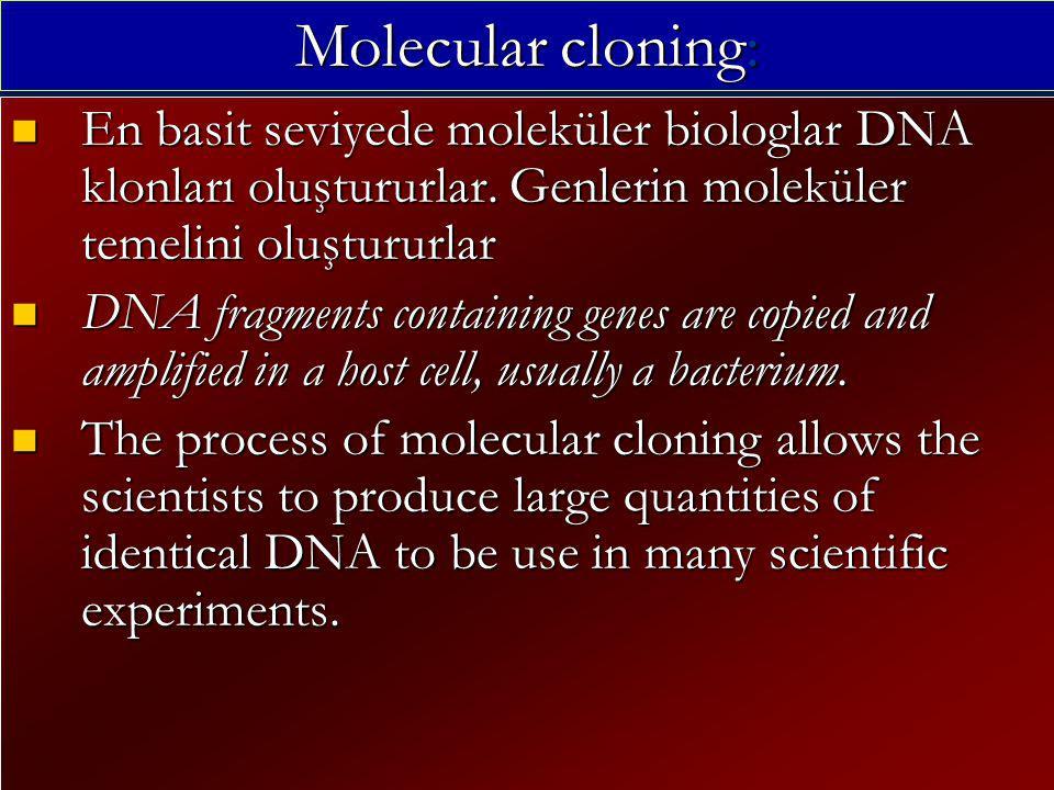 Molecular cloning: En basit seviyede moleküler biologlar DNA klonları oluştururlar. Genlerin moleküler temelini oluştururlar.