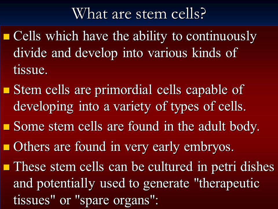 What are stem cells Cells which have the ability to continuously divide and develop into various kinds of tissue.