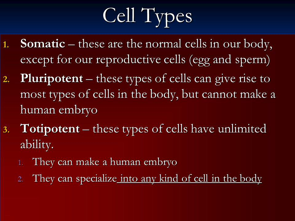 Cell Types Somatic – these are the normal cells in our body, except for our reproductive cells (egg and sperm)