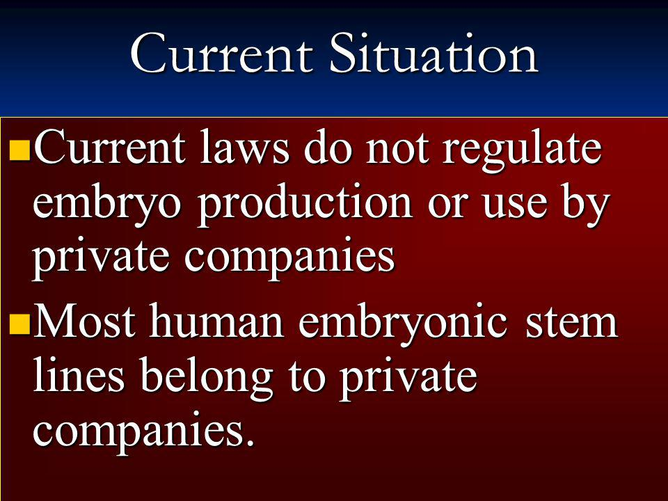 Current Situation Current laws do not regulate embryo production or use by private companies.