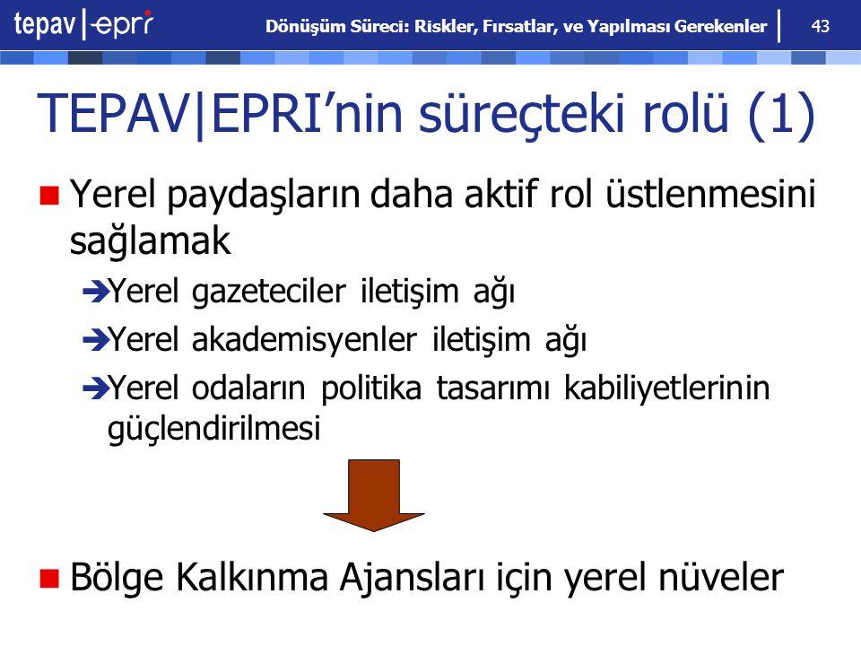 TEPAV|EPRI'nin süreçteki rolü (1)