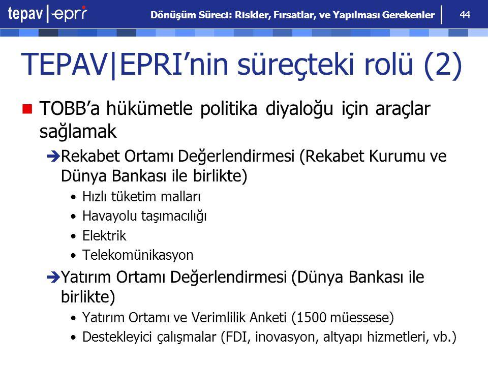 TEPAV|EPRI'nin süreçteki rolü (2)