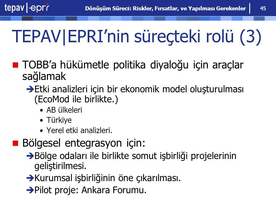TEPAV|EPRI'nin süreçteki rolü (3)