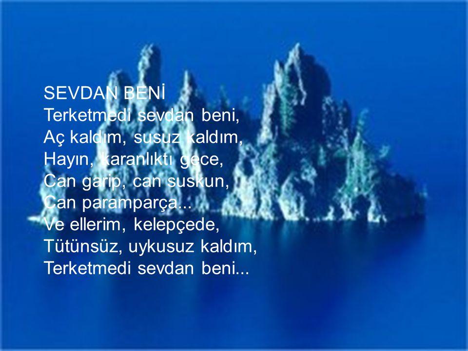 SEVDAN BENİ