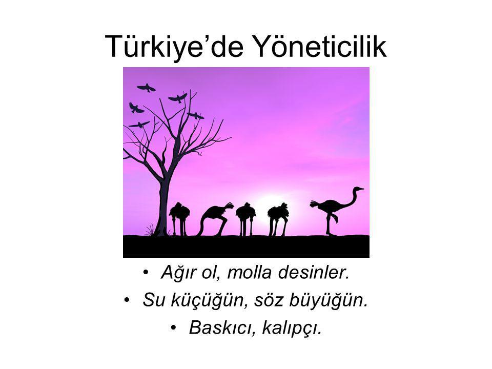Türkiye'de Yöneticilik