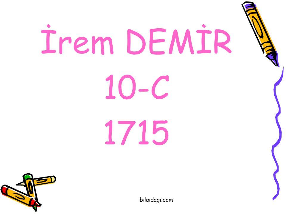 İrem DEMİR 10-C 1715 bilgidagi.com