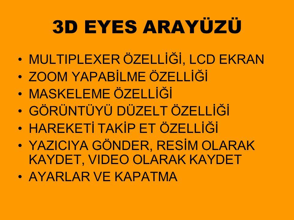 3D EYES ARAYÜZÜ MULTIPLEXER ÖZELLİĞİ, LCD EKRAN