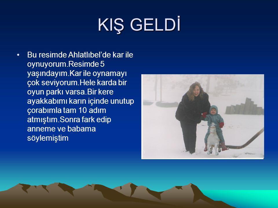 KIŞ GELDİ