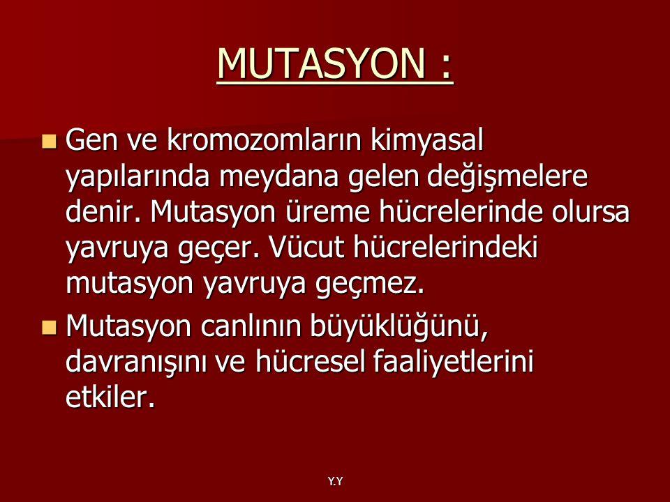 MUTASYON :