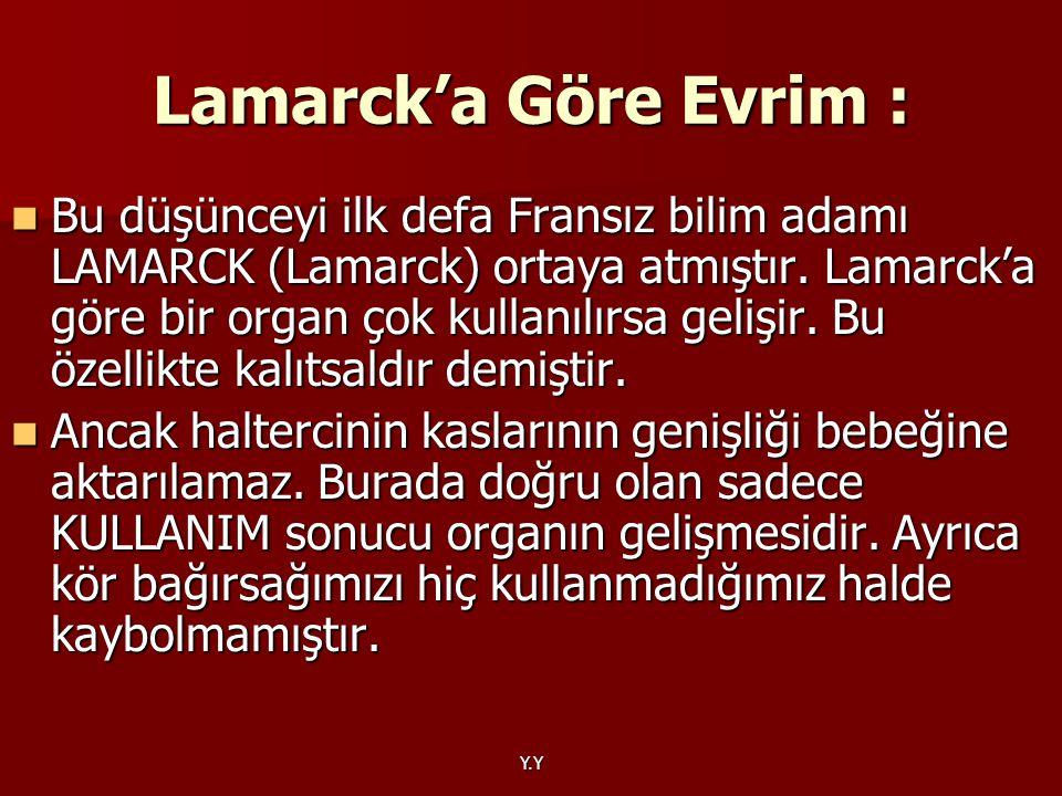 Lamarck'a Göre Evrim :